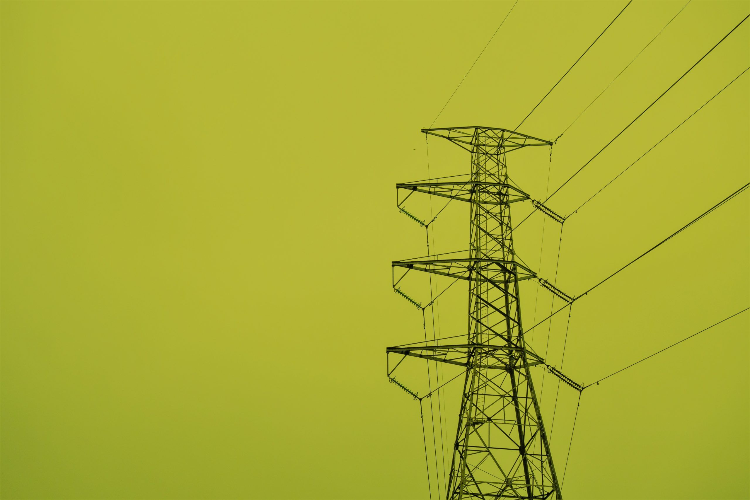 How can I know the hourly electricity consumption of my home or company?